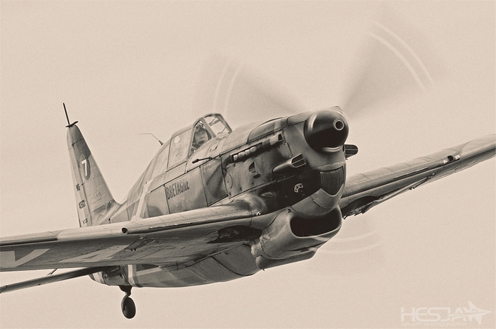 Morane-Saulnier MS.406 Finland